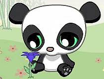 Очаровываем панду. Дарим цветы подружке