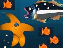 Ловить морской звездой морских ежей