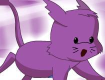 Игра помочь котенку Сачи оббежать картин