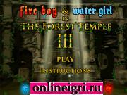 Огонь и Вода  в лесном храме Дополнение