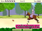 Гарцевание и конный спорт