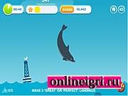 дельфин и сокровища