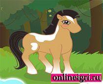 Маленький пони: на кого ты похож