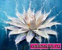 Рост цветочка кликер на логику