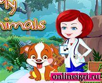 Ветеринария - уход за животными