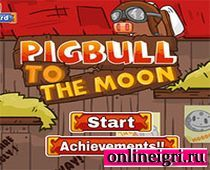 Полет бычка на Луну