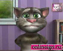 Говорящий кот Том: в комнате