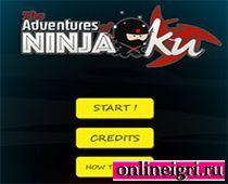 Ниндзя и его приключения