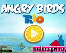 Злые птички в Рио