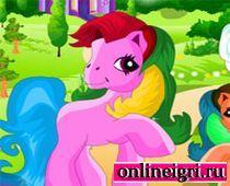 Маленький пони: разгляди различия