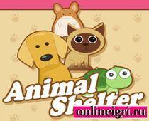 Игра про животных и собак