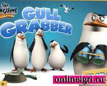 Мадагаскар: пингвины против чаек