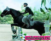 Усмири лошадей на Двоих