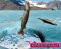 Рыбалка в ловле щуки зимой