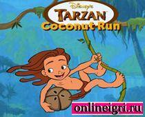 Дисней: сбор кокосов с Тарзаном
