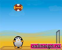 Пингвин и волейбол