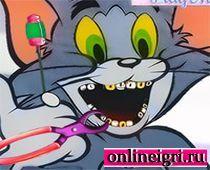 Зубы болят у кота лечим