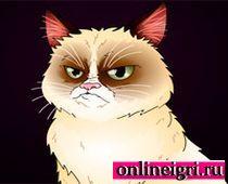 Кот кторый сердится