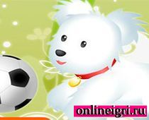 На двоих про собак с мячом